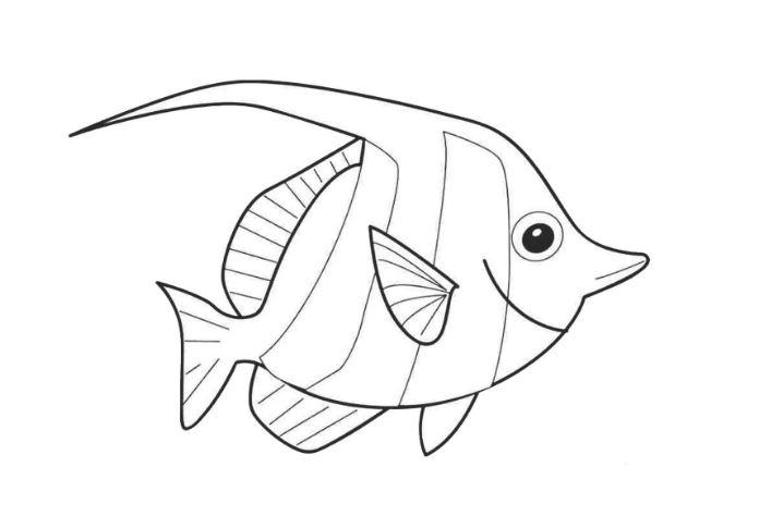 Mẫu tranh tô màu hình con cá đẹp dành cho bé từ 2 đến 5 tuổi