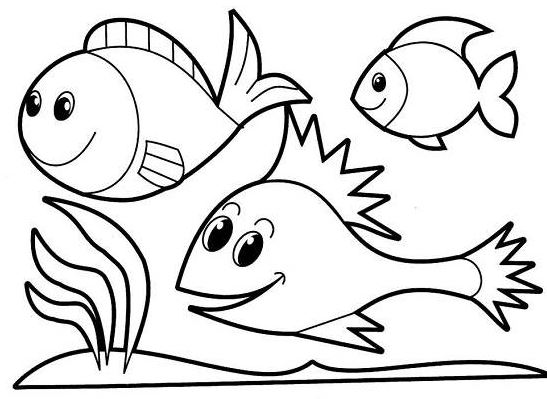 Mẫu tranh tô màu hình 3 chú cá dành cho bé 2 tuổi tập tô