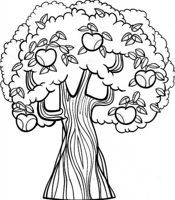Mẫu tranh tô màu cây táo cho bé