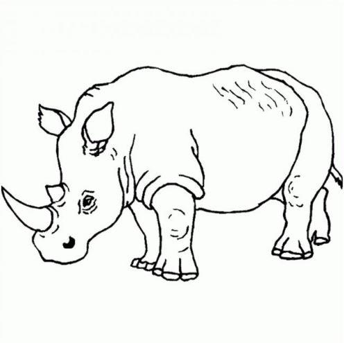 Mẫu tranh tô màu hình tê giác mạnh mẽ dành cho bé