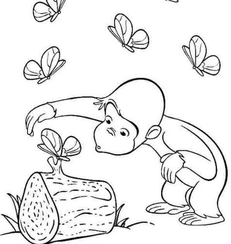 Mẫu tranh tô màu dành cho bé hình con khỉ đang nô đùa với bướm