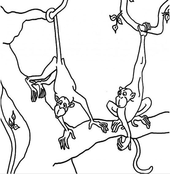 Mẫu tranh tô màu cho bé hình 2 chú khỉ đang nô đùa