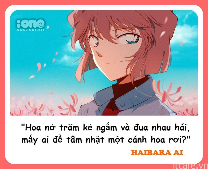 Haibara Ai cũng sở hữu IQ cực cao, là thiên tài trong lĩnh vực sáng chế, nghiên cứu khoa học. Tính cách Haibara có phần lầm lì, ít nói và lạnh lùng. Tuy nhiên, mỗi lần cô nàng mở miệng là một lần gây bão với hàng loạt phát ngôn siêu ngầu và siêu chuẩn.